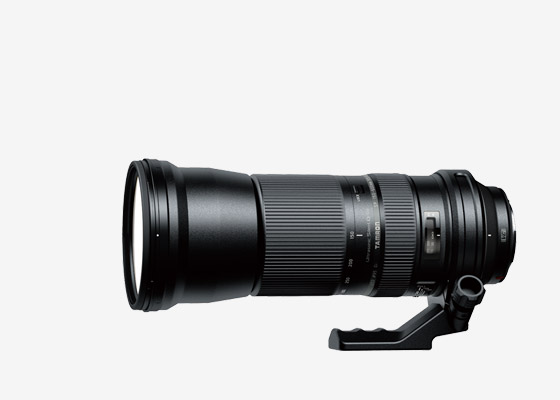 SP 150-600mm F/5-6.3 Di VC USD Model A011 > Image